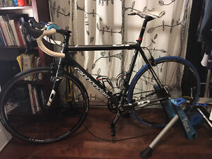 Cannondale CAAD 10 56cm