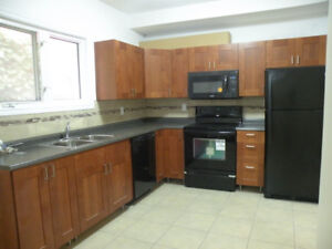 5 bedroom apartment for students in Sandy Hill - 1st. May