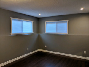 Huge Basement Suite in St. Lawrence Heights