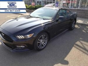 2016 Ford Mustang EcoBoost Premium  - $201.42 B/W