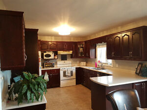 Kitchen cabinets including appliances