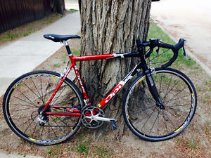 Opus Road Bike with Carbon Fork and Seat Tube