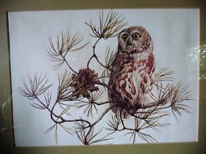 "Hand Signed and Numbered Lithograph by Peter Miehm ""Owl"" 1980 Stratford Kitchener Area image 2"