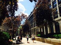 Coworking Vieux Montréal - Bureau à louer