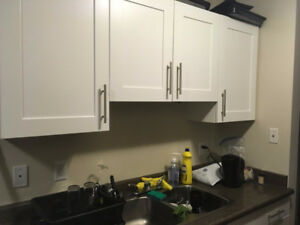 Takeover lease for 2 bedrooms apartment
