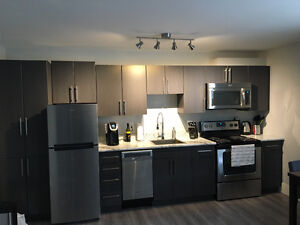Furnished 1 &  2 bedroom fully furnished apartments for rent