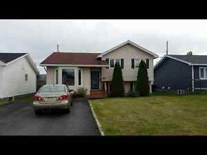 Spacious and bright 1 bedroom basement in Mount Pearl