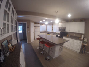 GORGEOUS PIGEON LAKE CABIN.  2 BED, 2 BATH.  STEPS TO THE LAKE! Strathcona County Edmonton Area image 1