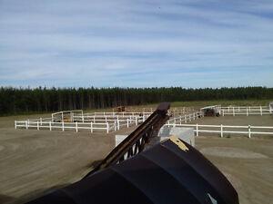 Magnifique domaine équestre situé en campagne à 5 min de la Vill Saguenay Saguenay-Lac-Saint-Jean image 2