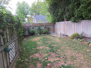 House for Rent Cornwall Ontario image 3