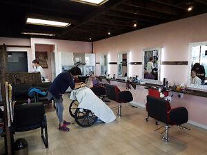 Beauty Salon grand opening in south Edmonton Edmonton Area image 5