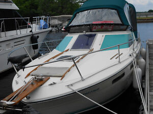 searay 26f.t excellent condition