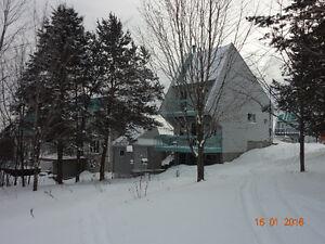 Chalet de ski 4 saisons & remise 8' X 12'