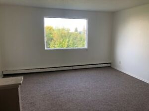 1 Bedroom Apartment with Den in Rocky Mountain House