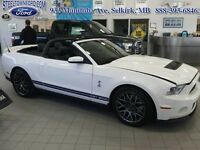 """2011 Ford Mustang """"SHELBY GT CONVERTIBLE""""   - Low Mileage"""
