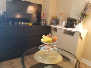 Renovated Studio(1 bedroom) sublet Near POLO PARK! (FREE IN AUG)