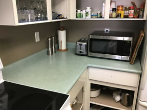 Free Free kitchen counter tops and Bathroom counter tops