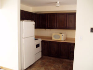 NEWLY RENOVATED 2 BEDROOM TOWNHOUSE HEAT AND HOT WATER INCLUDED