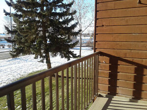 Affordable 2 bdrm apt. Leduc beautifully renovated