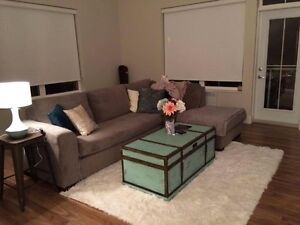 ROOM FOR RENT(New & Fully Furnished)