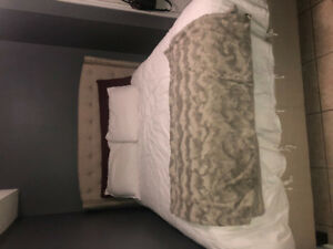 *FEMALE ONLY* BRAMPTON BASEMENT ROOM FOR RENT MONTH TO MONTH