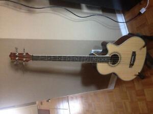 Acoustic Bass: Jay Turser Acoustic Bass Guitar 4 String Bass JTB