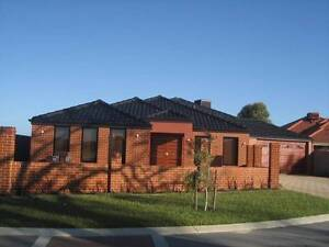 Free 100M/s NBN - Nice, New&Clean modern home Queens Park Canning Area Preview