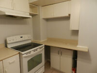 Must See Large Clean and Renovated Basement Apt. in Pickering