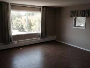2 bedroom apartment. Near downtown and Mall
