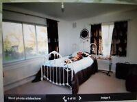 Refurbished double room to rent in Selhurst