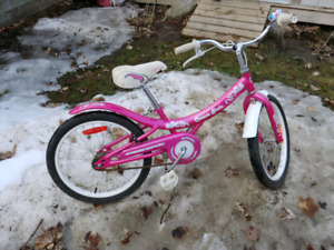 Girls Bicycle! Great condition.