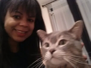 Caring and Dependable Cat sitter in Toronto