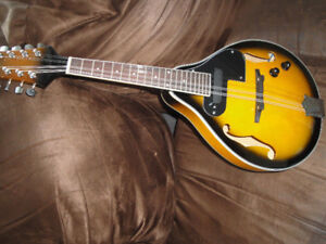 ELECTRIC MANDOLIN A STYLE BRAND NEW IN THE BOX+BAG $165