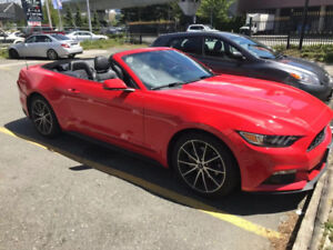 2017 Ford Mustang  Convertible EcoBoost Premium Lease takeover