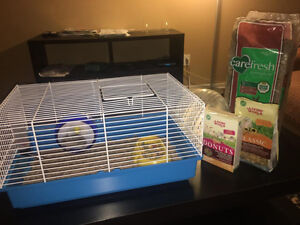 Young Dwarf Hamster - with cage and accessories