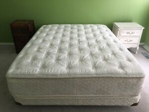 Queen bed in great shape