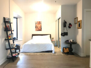 EXTRA LARGE STUDIO WITH AMAZING PRIVATE DECK IN THE VILLAGE