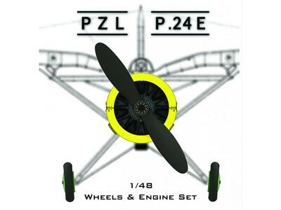Icaerodesign 1/48 PZL 24 E Resin Conversion For MIRAGE HOBBY Plastic Kit, used for sale  Shipping to United States