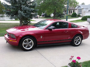 2006 Ford Mustang Coupe (Pony Package)