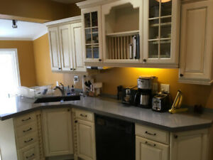 Price drop!! Complete Kitchen Cupboards and Countertop Set