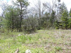 Approved Building Lot near Brunello Golf Course, Timberlea
