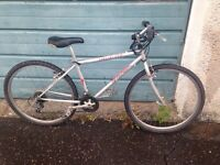 "Specialized 16"" mountain bike"
