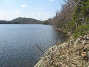 BEAUTIFULLY WOODED LAKEFRONT LOT ON LARGE LAKE