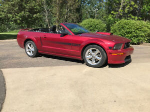 Mustang GT California Special. Convertable excellant condition