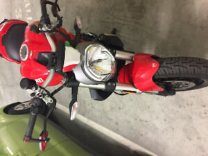 """Reduced"" Ducati Monster 1200"