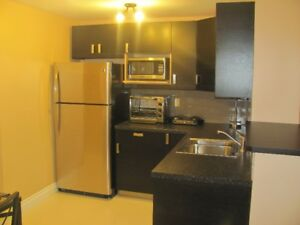Fully furnished basement apartment in Thickwood