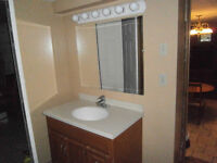 Large uptown furnished basement utilities & parking