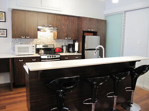 Fully Furnished 3 Bedroom Condo Avail Nov 1st