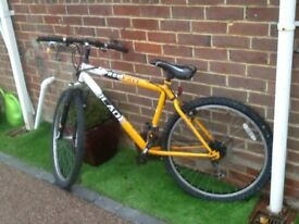 Blade aluminium frame mountain bike