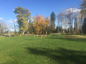 Campground & Golf Course with Restaurant 4 miles to Wabamun